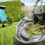 Why Buying a Garden Shredder Is a Worthwhile Investment
