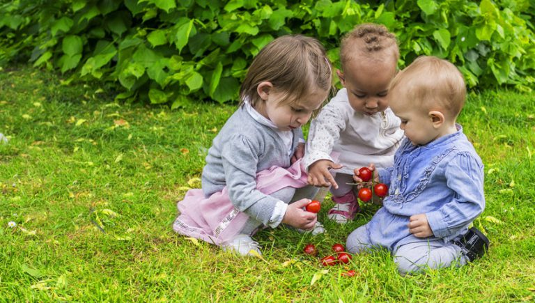 Make Your Garden a Safe Haven for Toddlers