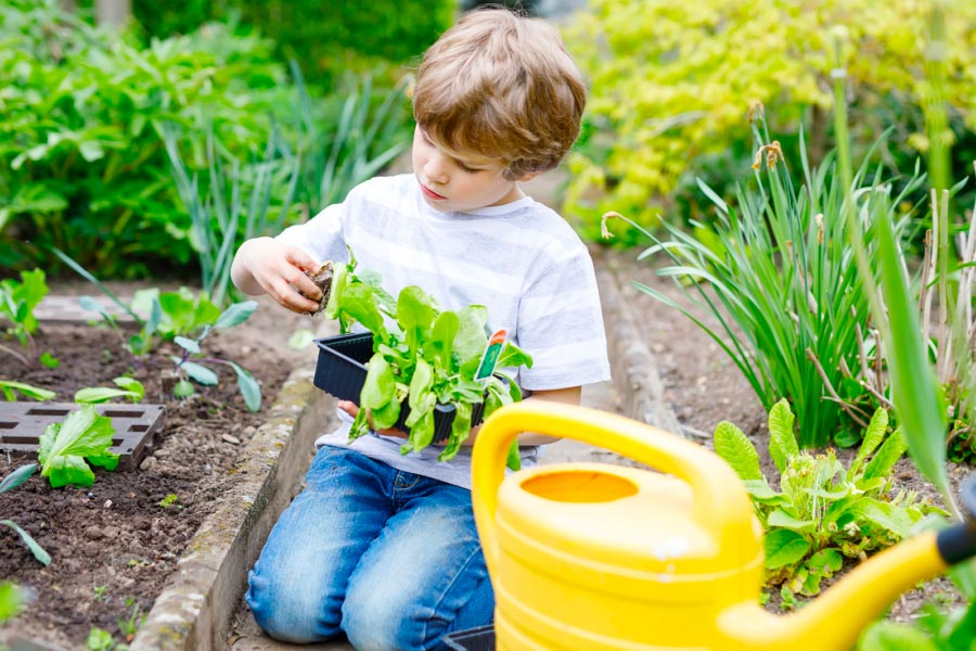 kid-garden
