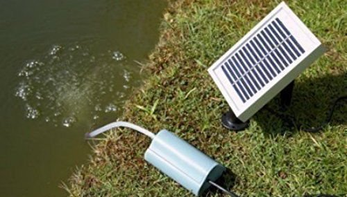 Water Pumps » Garden Tool Box