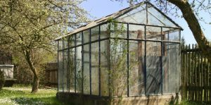 greenhouse-in-spring