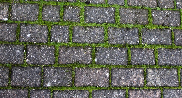 How to Weed Block Paving