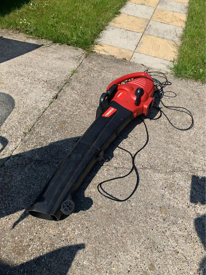 Comparing a petrol leaf blower with an electric and cordless leaf blower for leaf clearing performance