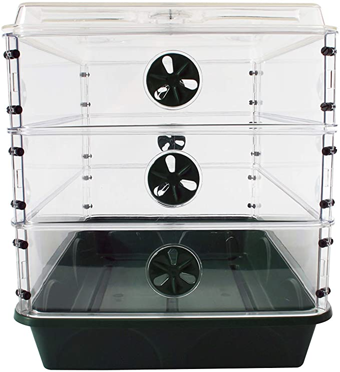 EarlyGrow 24 x 15 x 16.75 Inch. Domed Propagator with 3 Height Extenders and Locking Clip Set,