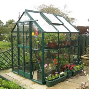 how to disinfect and clean a greenhouse?